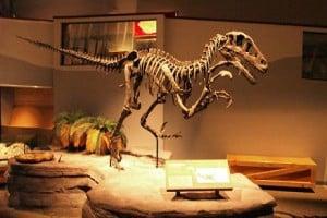 museo de dinosaurios con especímenes a tamaño real