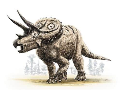cuernos triceratops