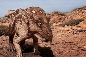 historia del protoceratops en su hábitat natural