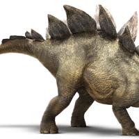 dibujo-stegosaurus
