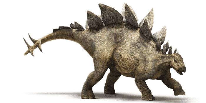 Dibujo de un Stegosaurus
