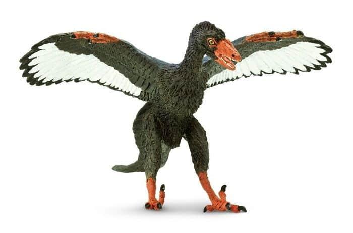 Descripción sobre el Archaeopteryx