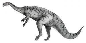 Dibujo de un Plateosaurus, perteneciente a la Familia Plateosauridae