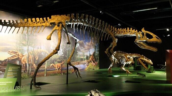 Reeconstrucción de un Cryolophosaurus