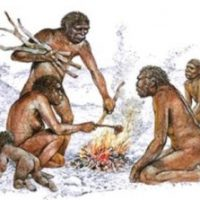 erectus y el fuego
