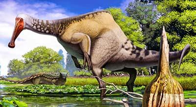 Deinocheirus – dinosaurio carnívoro