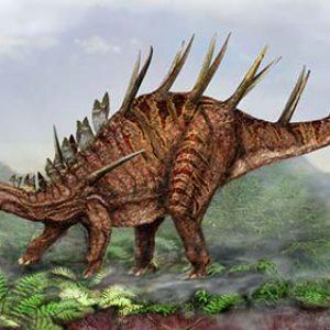 Kentrosaurus – dinosaurio herbivoro