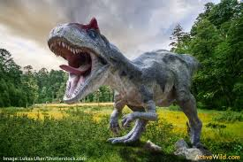 albertosaurus – dinosaurio carnivoro