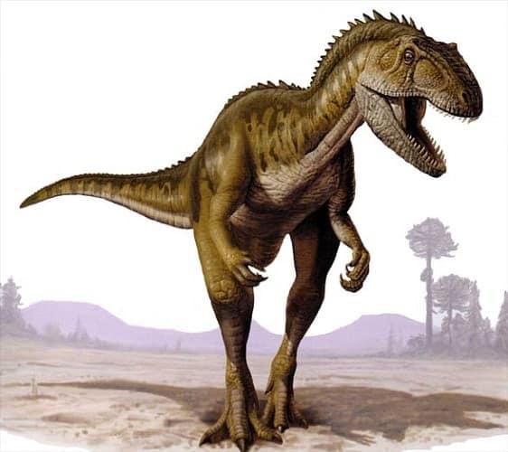 abelisaurus  voraz depredador con dientes en forma de daga