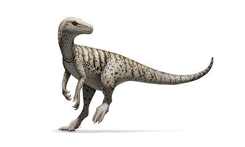 el herrerasaurus un feroz y primitivo dinosaurio