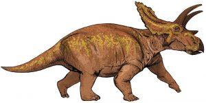 Dibujo de un Anchiceratops