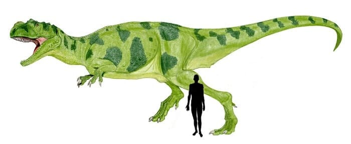 Descripción sobre el Metriacanthosaurus
