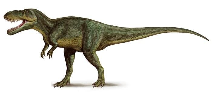 Dibujo de un Torvosaurus