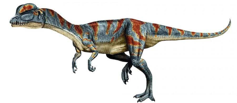 dilophosaurus un carnivoro peligroso