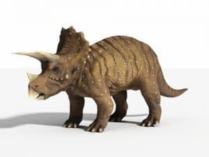 Triceratops el dinosaurio de tres cuernos más conocido