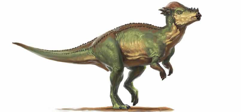 wannanosaurus