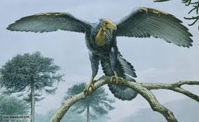archaeopteryx en arbol