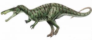 Dibujo de un Suchomimus