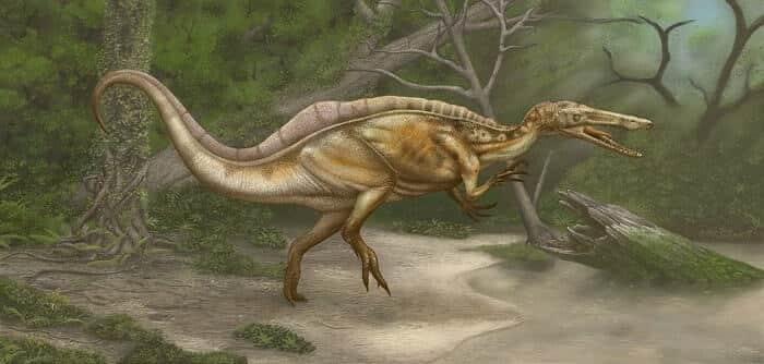 Hábitat natural del Suchomimus