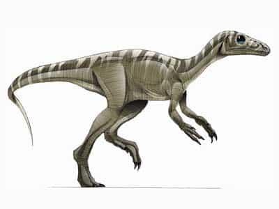 dinosaurios-omnivoros
