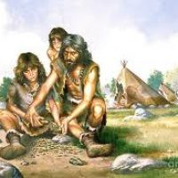 grupo homo sapiens