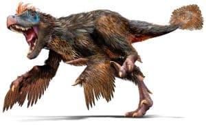 Velociraptor con plumas