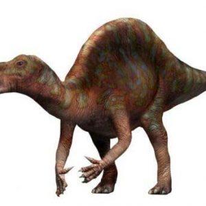 Ouranosaurus – dinosaurio herbívoro