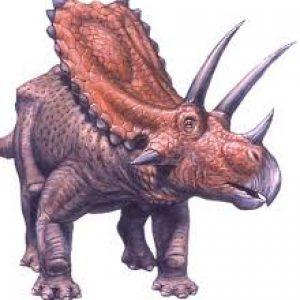 Pentaceratops – dinosaurio herbivoro