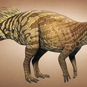 Psittacosaurus – dinosaurio herbivoro