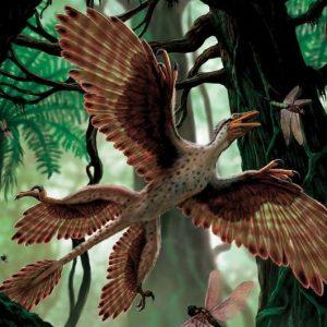 microraptor – dinosaurios voladores