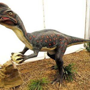 oviraptor – dinosaurio omnivoro