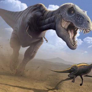 T-Rex cazando – el rey de los carnívoros