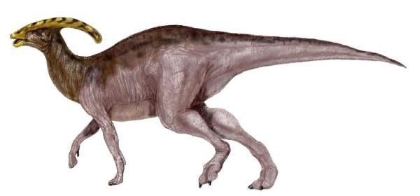 crestas de dinosaurios