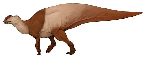 dinosaurio hadrosaurus