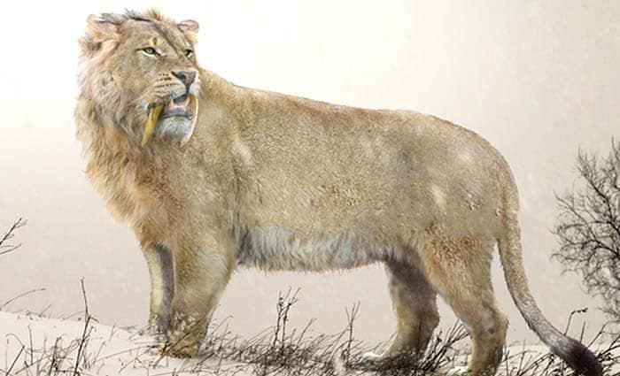 leon prehistórico