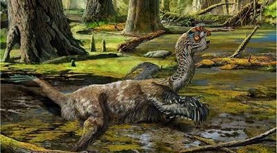 habitat del oviraptor