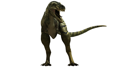 dinosaurio Nanotyrannus
